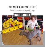 TIPS: How to measure your dog