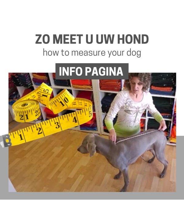 TIPS: Hoe meet ik mijn hond?