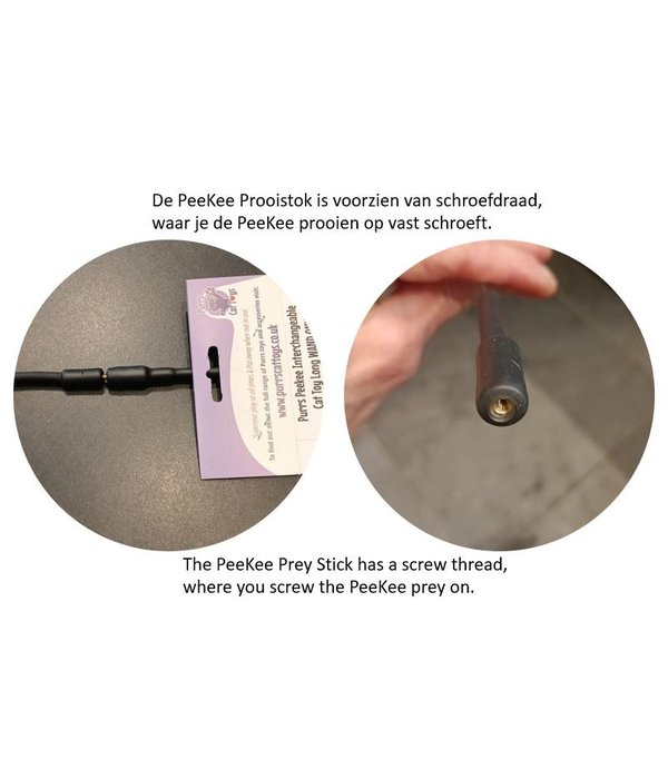 Purrs PeeKee Prey Wand Cat Toy