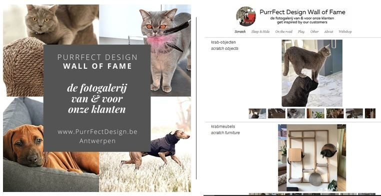 PurrFect Design Wall of Fame
