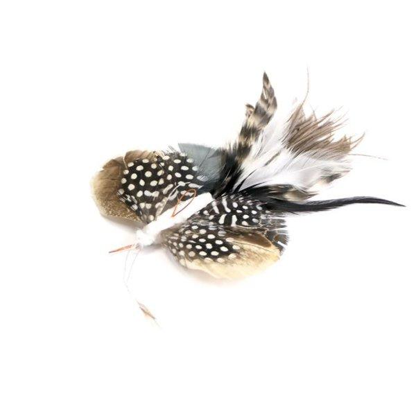 Langstaart vlinder
