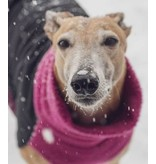 Chilly Dogs GREAT WHITE NORTH WINTER COAT - Sighthound / Long & Lean breeds (last pieces Fuchsia)