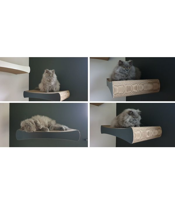 Cat-on Wall Tablets (by 2 or more)