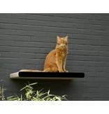 Cat-on Wall Tablet Kim Tana
