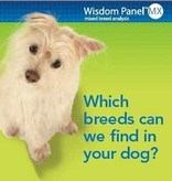 DOG DNA TEST - WISDOM PANEL INSIGHTS