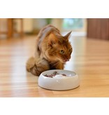 Lucky-Kitty Ceramic Cat-Bowl (2 sizes)