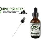 Spirit Essences Self-Esteem