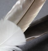 Tabby Tijger Vogel Deluxe navulling