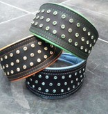 A Touch of Color - Dog Collar