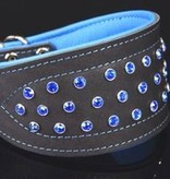 A Touch of Color - Dog Collar (XL)