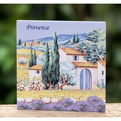 Magneet Provence