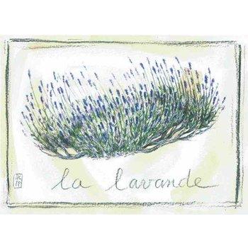 Lumière de Provence Print lavendelplant