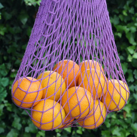 Boodschappennetje met handvatten paars