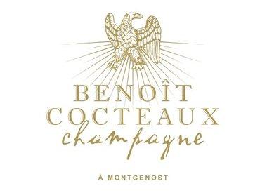 Benoît Cocteaux