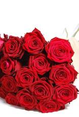 flotte Blumen herrlich rote Rosen -12 Stück