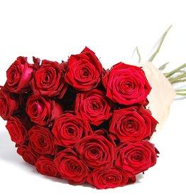 flotte Blumen 12 Rote Rosen