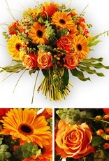 flotte Blumen Blütenpracht in Orange