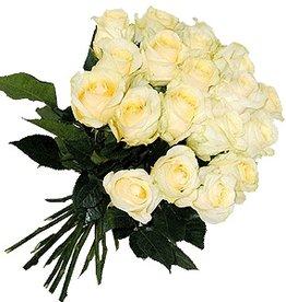 flotte Blumen Rosenstrauß Creme zum Champagnergeschenk