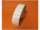 Zebra etiket 51x25 880007-025D