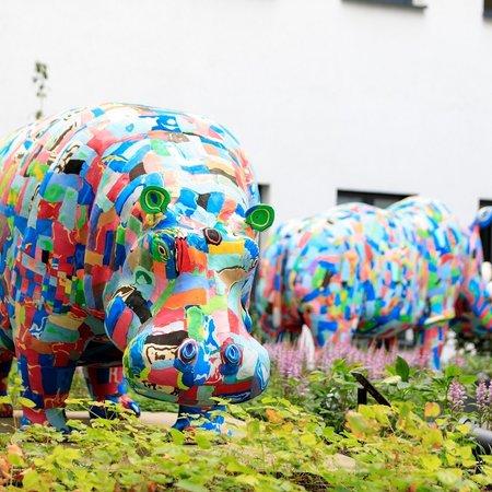 Hippopotame et rhinocéros