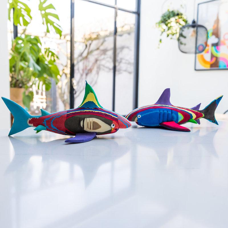 Ocean Sole  Requin moyen