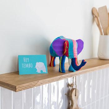 Ocean Sole  Elefantenmedium