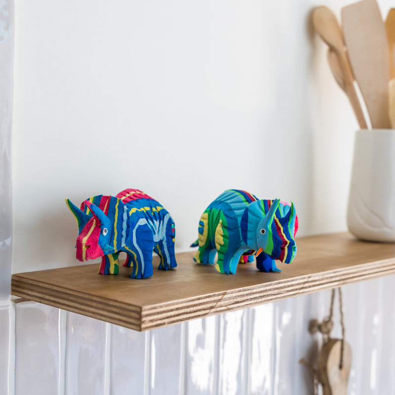Ocean Sole  Triceratops klein
