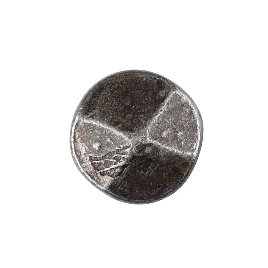 Schmiedeeisen Abdecknagel 20 x 25mm - Zinn-Effekt