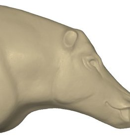 Wildschwein Medium