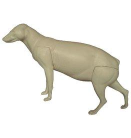 Marderhund Aufwärts Mittelstark