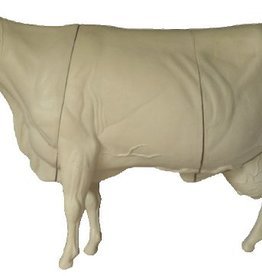Domestic Cow Medium to Large Standing