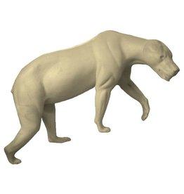 Black Bear Walking Uphill Medium