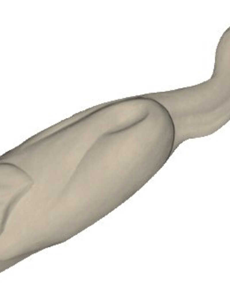 Aalscholver Medium tot Large