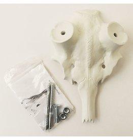Fallow Deer Imitation Skull