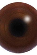 Auerhoen (Tetrao urogallus)