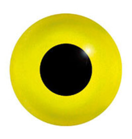 Common goldeneye