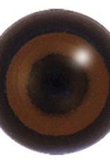 Bruine kiekendief (Circus aeruginosus)