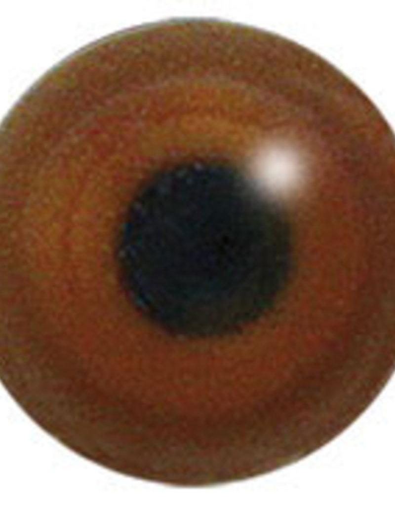 Häherkuckuck (Clamator glandarius)