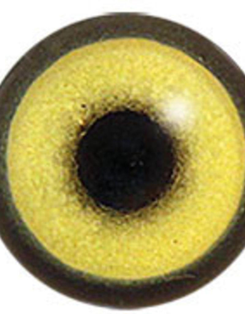 Zilvermeeuw (Larus argentatus)
