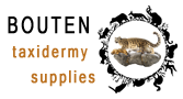 Bouten Taxidermy Supplies