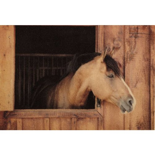 Deurmat foto paard