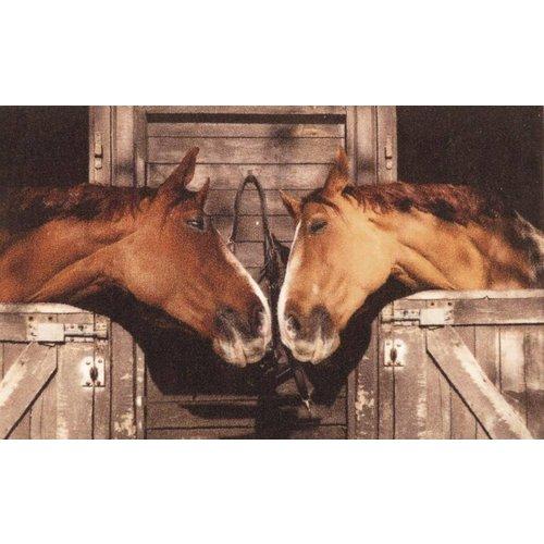 Deurmat foto paarden