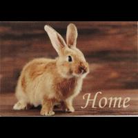 Deurmat foto konijntje