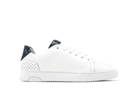 Blaue  Weiße Sneakers Teagan Lizard