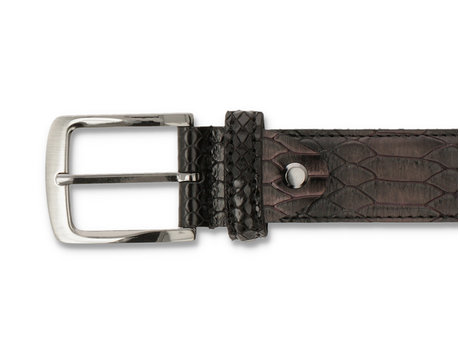REHAB RIEM SNAKE MET DARK BROWN-BLACK