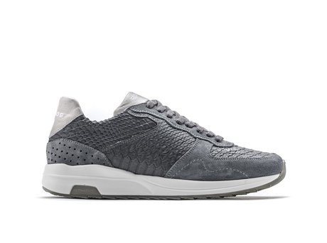 Rehab Dark Grey Sneakers Hunter Snake Vnt
