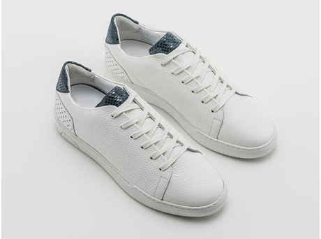 Rehab Blue White Sneakers Teagan Lizard