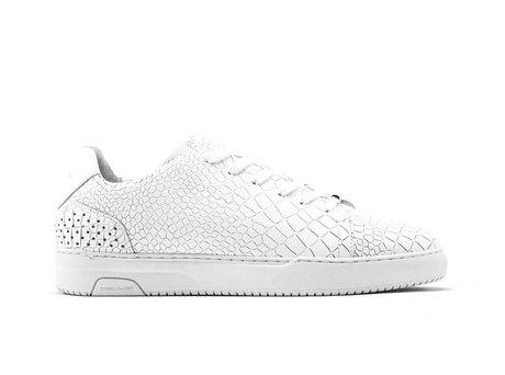 White Sneakers Teagan Croco