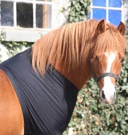 Harry's Horse chest protector