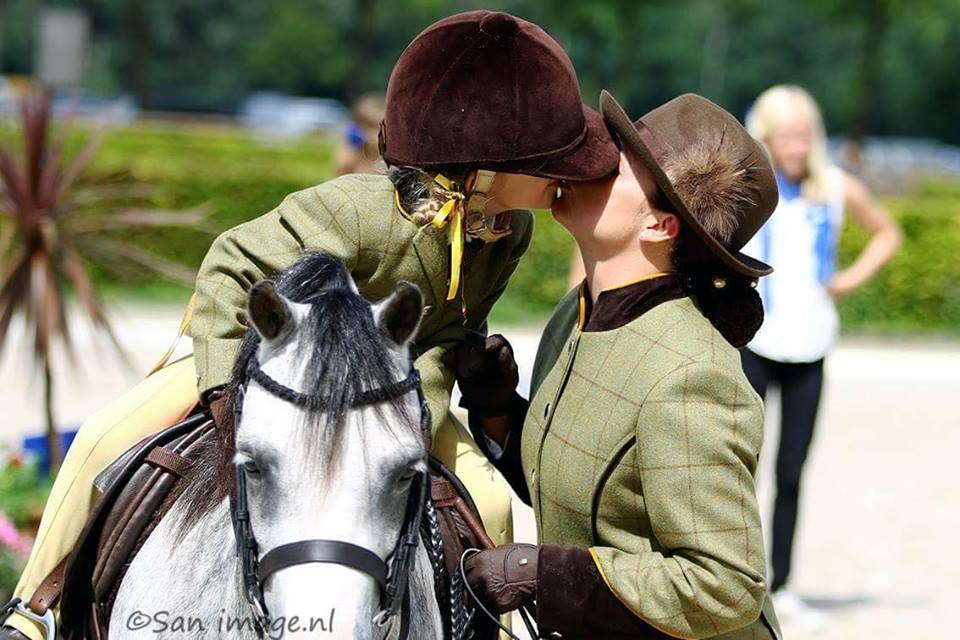 "Ponytrends Rij hoofdstel ""show' met hoge Engelse neusriem"